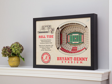 5c4981a2 3D Stadium Wall Art
