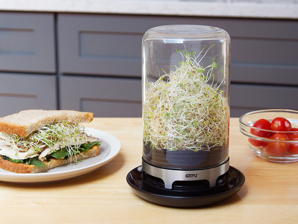 Ventilated Sprouting Jar By Bivita The Grommet