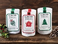 Urban Agriculture: Grow Your Own Holiday Plant Kit