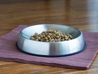 Dr. Catsby's: Whisker Relief Food Bowl