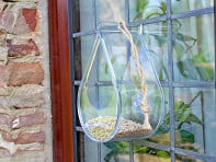 Wildlife World: Dew Drop Window Feeder