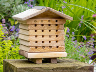 Wildlife World: Stacking Solitary Bee Hive