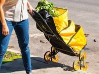UpCart: Pro Shopper All-Terrain Cart