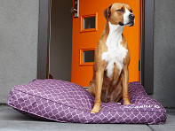 Molly Mutt: Royals Dog Bed Duvet & Stuff Sack
