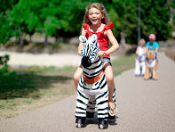 Medium Zebra Ride-On Toy