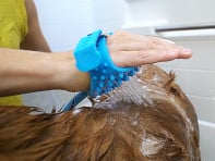 Aquapaw: One-Handed Pet Bathing Tool