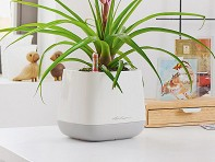 LECHUZA: Yula Self-Watering Single Planter