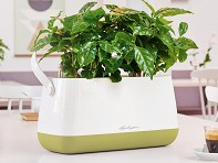 LECHUZA: Yula Self-Watering Double Planter