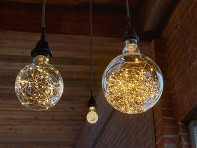 The Light Garden: LED String Light Bulb