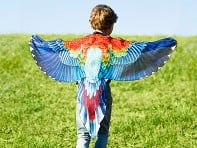 Playful Apparel: Bird Play Wings