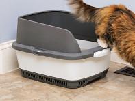 Cateco: Odorless Litter Box Kit