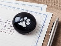 TZ Glass by Tari Zarka: Pet Memorial Glass Round Paperweight
