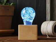 E.P. Lights: Artistic Edison Bulb Lamp