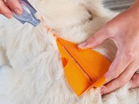 Combat Comb™: Flea & Tick Treatment Applicator Tool