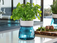 Livana Home: Ceramic Self-Watering Herb Pot