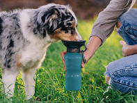 Highwave: AutoDogMug? Dog Bowl Water Bottle