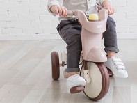 iimo USA: 3-in-1 Folding Tricycle with Canopy