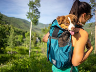 K9 Sport Sack?: Trainer Dog Backpack Carrier
