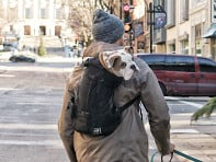 K9 Sport Sack?: AIR Sport Dog Backpack Carrier