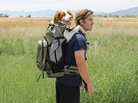 K9 Sport Sack?: Rover Large Dog Backpack Carrier