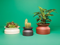 Boskke: Spool Planter
