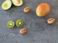 Peel Ripe Loops: Fruit and Vegetable Peeler - Set of 3