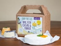 Dairy-Free DIY Cheese Kit