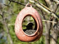 Byer of Maine: Egg Fly Through Feeder
