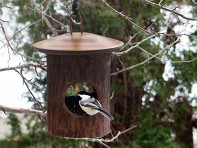 Byer of Maine: Natural Fly Through Feeder