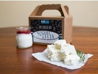 Feta, Greek Yogurt & Yogurt Kit
