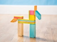 Tegu: 14 Piece Magnetic Wooden Block Set