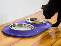 Messy Mutts: Cat/Tea Cup Dog Double Feeder Bowl