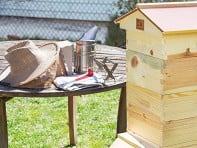 Beekeeping Kit + Accessories