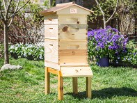 Honey Bee City: Starter Beekeeping Kit