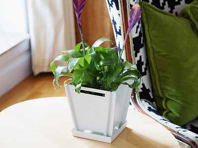 "Groovebox Living: 6"" Modular Planter"