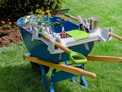 Little Burros: Wheelbarrow Organization Shelf - Small