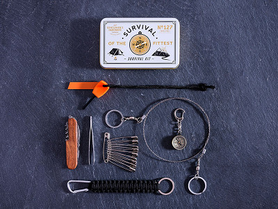 Wild & Wolf: Mini Survival Kit