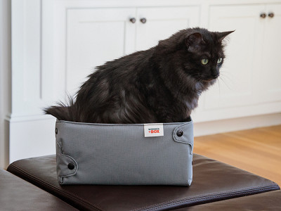 Whisker+Box: Compression Cat Box