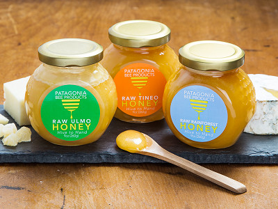 Patagonia Bee Products: Monofloral Chilean Honey Gift Box Set