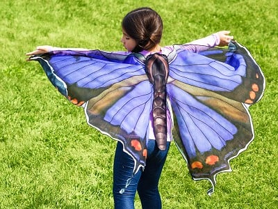 Playful Apparel: Butterfly Play Wings