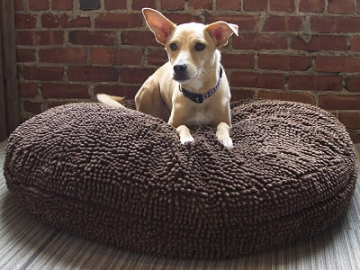 Soggy Doggy: Super Snoozer Pet Bed
