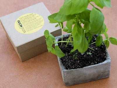 NativeCast: Cast Your Own Planter