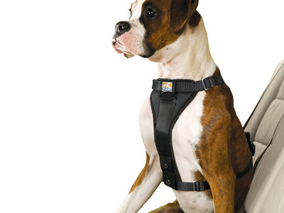 Kurgo: Enhanced Strength Tru-Fit Harness