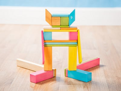 Tegu: 24 Piece Magnetic Wooden Block Set