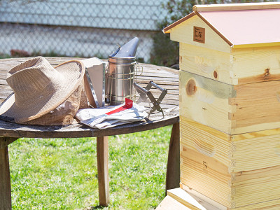 Honey Bee City: Beekeeping Kit + Accessories