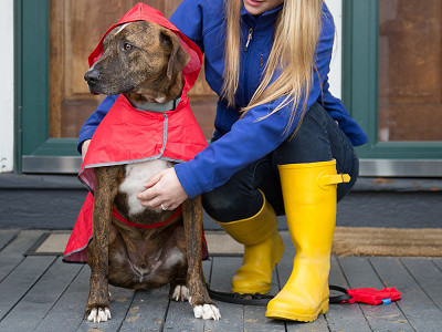 RC Pets: Packable Rain Poncho