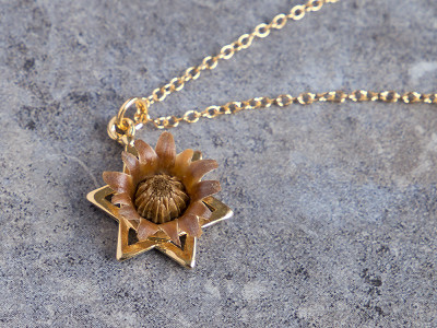 The Blessing Flower: Star of David