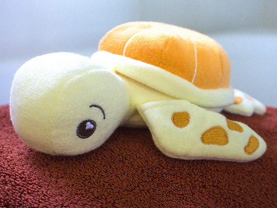 SoapSox: Taylor the Turtle