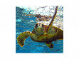 Children's Wooden Jigsaw Puzzle - Sea Turtle