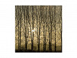 Small Wooden Jigsaw Puzzle - Poplars at Sunrise